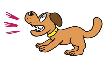 訪問者に吠える犬