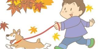 男の子の犬の散歩