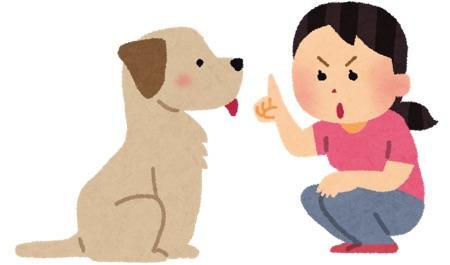 犬にしつけする女性