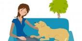 ソファーの上の飼い主と犬